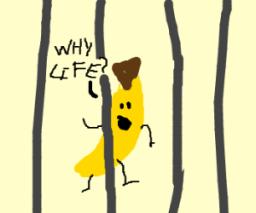 Mr. Spun's Truly Terrible Awful Jokes #13